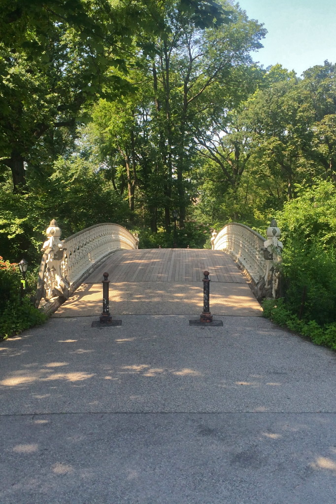 a bridge in a park