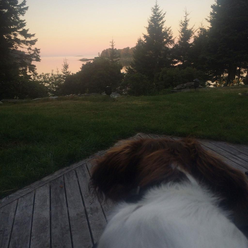 sunrise-in-Maine